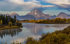 Picture forest, mountains, lake, USA, Grand Teton National Park