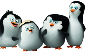 Picture cartoon, Classified, Penguins of Madagascar, the penguins of Madagascar