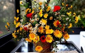 Picture flowers, bouquet, window, basket