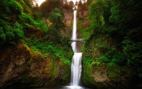 Picture greens, trees, landscape, bridge, rock, river, waterfall, stream, Oregon, gorge, USA, Oregon, Multnomah, Multnomah
