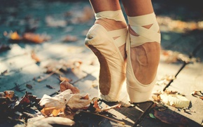 Picture autumn, leaves, the sun, feet, deck, ballerina, Pointe shoes
