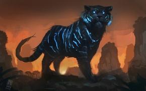 Picture tiger, art, Mystic Tiger, Raph04art