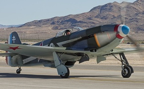 Picture the plane, fighter, WWII, Yakovlev, The Yak-3, Yak-3