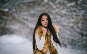 Picture winter, girl, comfort, Pocahontas