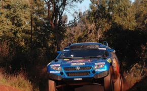 Picture thickets, Volkswagen, Touareg Race