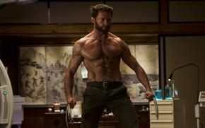 Picture Wolverine, Wolverine, Hugh Jackman, Logan, Hugh Jackman, The Wolverine, Immortal