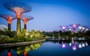 Wallpaper design, gardens, Singapore, water, the evening, lights, Gardens by the Bay, Bay, the bushes, trees, ...