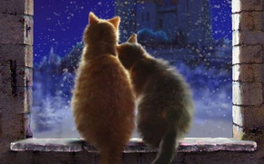 Picture winter, snow, love, cats, snowflakes, night, castle, window, art, pair, sill