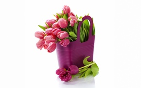 Picture flowers, bouquet, tulips, fresh, flowers, tulips, purple, bouquet