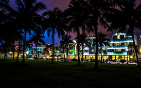Picture night, palm trees, home, Miami, FL, Miami, cars, florida, hotels, vice city, South Beach