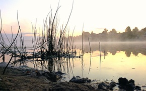 Picture Water, Nature, Fog, Lake, Dawn