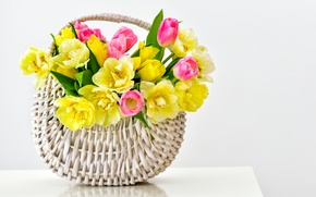 Picture basket, tulips, flowers, tulips, bouquet, basket