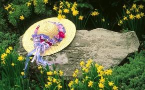 Wallpaper Flowers, Kentucky, Hat, Louisville, Stone