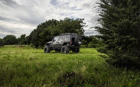 Picture jeep, jeep, wrangler, Wrangler, unlimited
