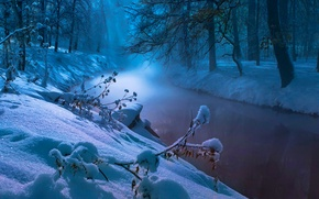 Picture winter, forest, snow, trees, river, stream