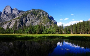 Picture forest, trees, mountains, lake, Yosemite National Park