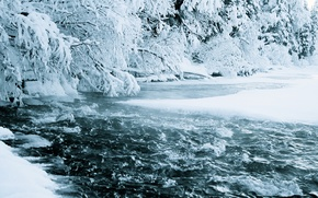 Wallpaper winter, forest, water, snow, nature, river, stream