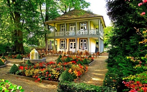 Picture flowers, house, garden