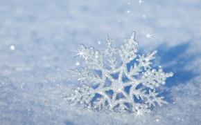 Wallpaper winter, snow, nature, new year, Christmas, christmas, merry christmas