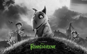 Wallpaper dog, dog, 2012, cartoon, Frankenweenie, FRANKENWEENIE, Tim Burton, Disney