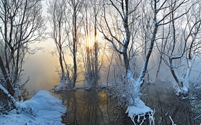 Picture autumn, snow, fog, lake