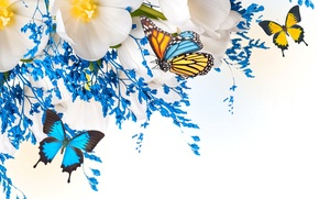 Picture flowers, collage, butterfly, wings, petals, tulips, moth