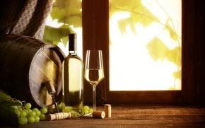Picture wine, white, glass, window, grapes, barrel