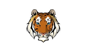 Picture face, tiger, minimalism, white background, tiger