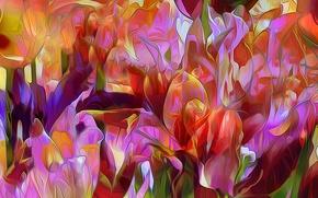 Picture flowers, nature, rendering, petals, flowerbed