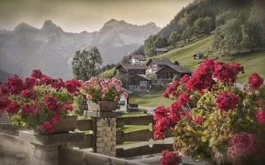 Picture Alps, Austria, Slabs, Bschlabs, Tyrol, village, Austria, mountains, Tyrol, houses, Alps, flowers