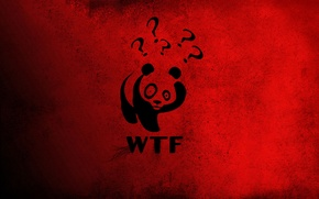 Wallpaper red, Panda, China, Winnie The Pooh, wtf, the question mark, big eyes.
