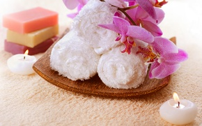 Picture towel, candles, soap, Orchid