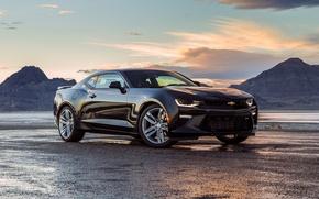 Picture black, Chevrolet, Camaro, Chevrolet, Black, Camaro