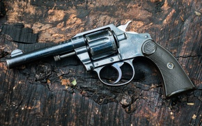 Picture weapons, background, trunk, revolver, Colt