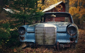 Picture house, autumn, abandoned, pine, woodland, Mercedes W110