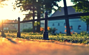 Picture greens, grass, asphalt, the sun, macro, nature, background, widescreen, Wallpaper, the fence, fence, meadow, the …