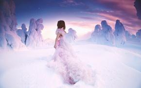 Picture girl, snow, dress, Lichon