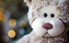 Picture sadness, bear, bear, plush