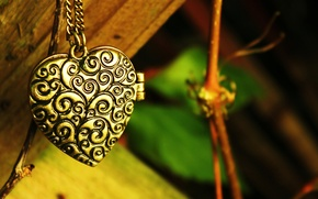 Picture greens, leaves, patterns, heart, branch, pendant, chain, heart, suspension