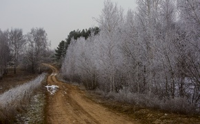 Wallpaper frost, road, trees, autumn, nature