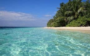 Picture sand, sea, tropics, palm trees, shore, blue water