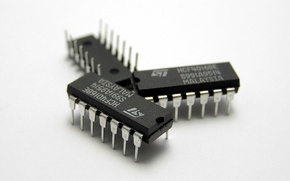 Picture chip, electronics, chip chip