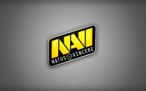 Wallpaper Team, Counter-Strike, Dota 2, Champions, Natus Vincere, Na`Vi
