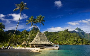 Picture beach, tropics, palm trees, cafe, Tahiti, Moorea, tropics beach, Moorea, Tahiti