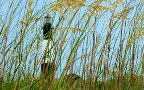 Picture the sky, grass, lighthouse