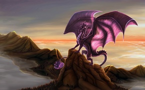 Picture Dragon, wings, rocks