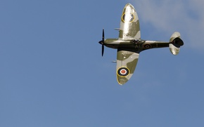 Picture flight, fighter, the airfield, Spitfire, Mk XVI