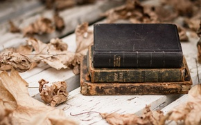 Picture leaves, background, books