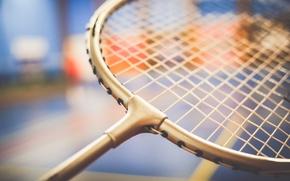 Wallpaper badminton, the game, racket