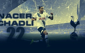 Wallpaper Football, Spurs, belgium, Tottenham Hotspur, nacer, chadli